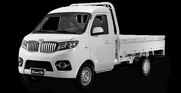 T30 Mini Truck CS 1.5 5MT ELT